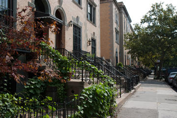 Day Trip Harlem Renaissance Walking Tour with Lunch near New York, New York