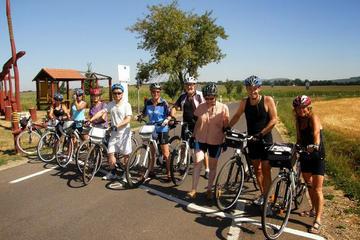 8-tägige geführte Fahrradtour in einer kleinen Gruppe von Prag nach...