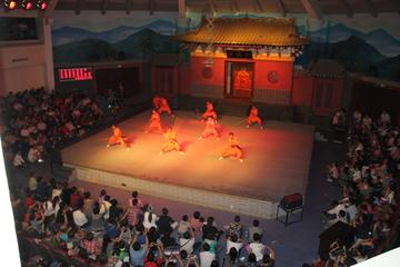 2-Day Private Luoyang Tour from Xian: Longmen Grottoes-White Horse Temple-Shaolin Temple-Kungfu Performance