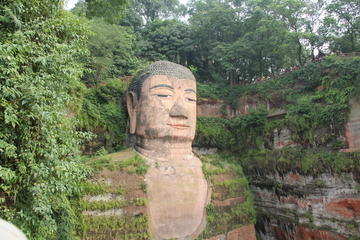 2 Days Private Chengdu Tour: Leshan Giant Buddha and Chengdu Research Base of Giant Panda-No Shopping Stops