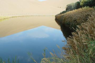 Private Dunhuang Adventure Full-Day Tour: Mo Gao Caves-Crescent Spring and Singing Sand Dune