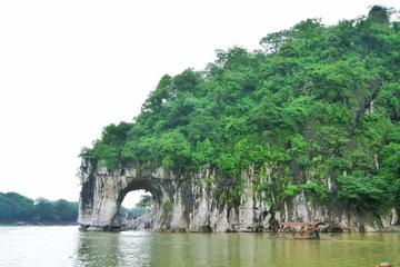 Private Guilin Highlights Day Tour: Reed Flute Cave - Elephant Trunk...