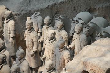 Private Half Xian Day Tour: Terra-Cotta Warriors