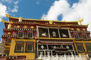 Small Group Day Tour to Shangri-la of Max 7 Travelers Songzanglin Monastery-Old Town of Shangri-la-Pudacuo National Park-No Shopping Stops