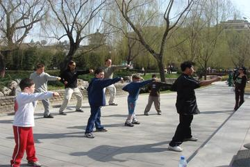 Excursão de aventura para a família em Pequim: aula de kungfu no...