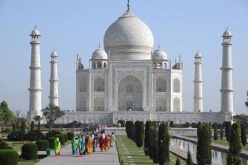 01-Day Tour of Taj Mahal By Express train