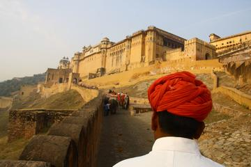 2-Days Private Golden Triangle Tour