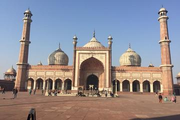 Delhi Sight Seen Tour