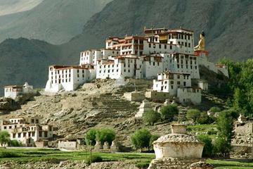 6-tägige Himalaya Ladakh-Tour: Buddhistische Klöster, Seen und Yaks...