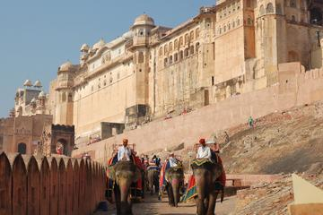 excursion-d-une-journee-a-jaipur