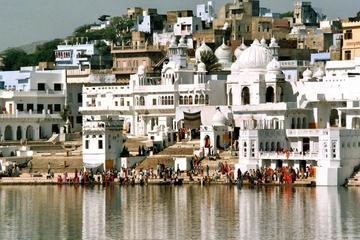 Viagem diurna particular a Pushkar
