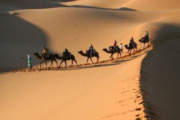 Private 3-Day Desert Tour from...