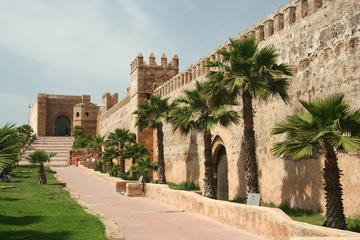 Casablanca Landausflug: Privater Tagesausflug nach Casablanca und...