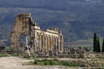 Excursión privada: Excursión de un día a Meknes y Volubilis desde Fez