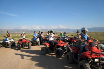 Marrakech: 3-Hour Quad Bike Adventure