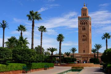 Marrakech shore excursion from Agadir