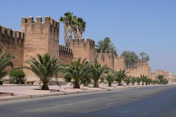 Taroudant & the oasis of Tiout shore excursion
