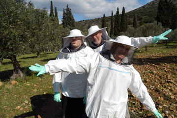 Become a Beekeeper for a Day in...