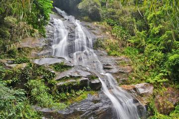 Tijuca National Park Customizable Private Tour in Rio de Janeiro
