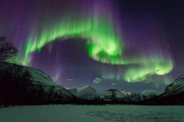 Op zoek naar het noorderlicht, tour met kleine groep vanuit Tromsø