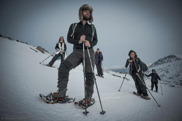 Small-group Snowshoeing Tour from...