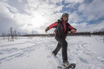 Snowshoeing Tour from Tromso