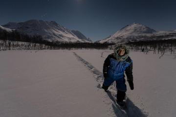 'Star Walk' Night Snowshoeing Tour from Tromso