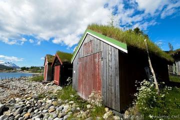Visite en petit groupe à la découverte des paysages de l'Arctique au...