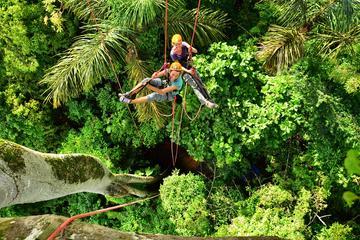 Escalada nas copas das árvores em Manaus