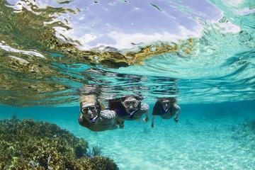 Excursão com mergulho com snorkel no Panamá