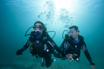 Experiência pela Ilha Drake e destroços do avião B-45 mergulhadores...