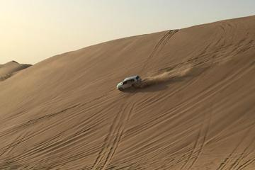 Liwa Full-Day Tour from Abu Dhabi