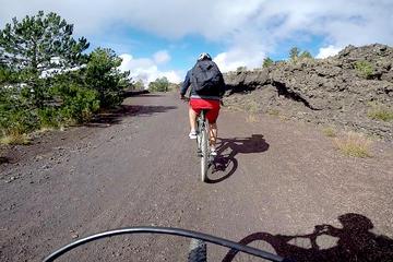 5-Hour Mount Etna Mountain Biking Tour from Catania