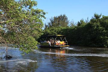Tour panoramico di Pantanal Carioca in barca con pranzo facoltativo