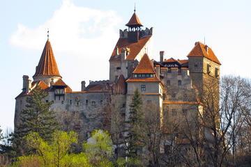 Visite du château de Transylvanie