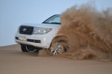 Safari por el desierto por la tarde