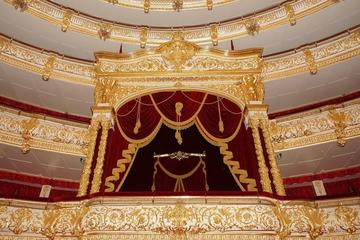 Tour privato: Piazza Rossa con tour del backstage del teatro Bolshoi