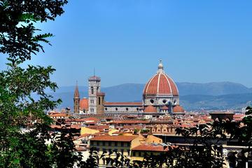 Recorrido guiado por el complejo del Duomo