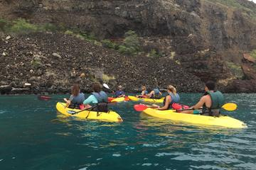2-Hour Guided Kayak or Paddle Board...