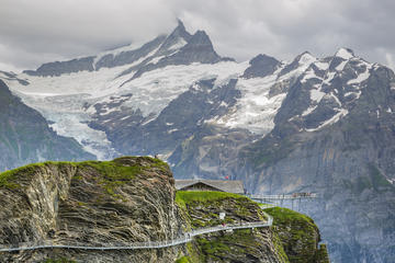 Grindelwald First adventure tour with...