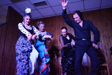 Spettacolo di flamenco con cena e workshop Madrid