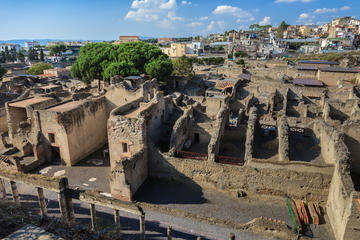 Half-Day Herculaneum Tour from...