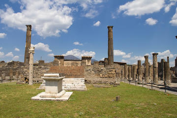 Half Day Pompeii Tour with Wine Tasting and Lunch from Sorrento