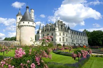 Castelli della Valle della Loira in un giorno da Parigi con trasporto