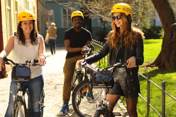 Private Guided Day or Night Alternative Sightseeing Electric Bike Tour