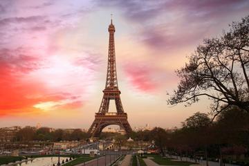 Acesso prioritário ao cume da Torre Eiffel com anfitrião