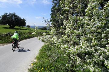 Tour in bici di 7 giorni in Sicilia alle città collinari barocche con
