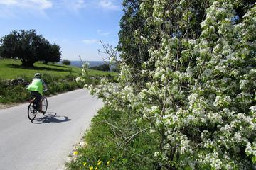 Tour in bici di 7 giorni tra le città collinari barocche della