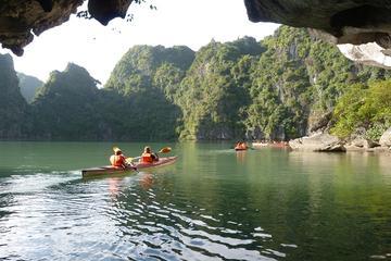 Croisière d'une journée dans la baie d'Halong, au départ de Hanoi