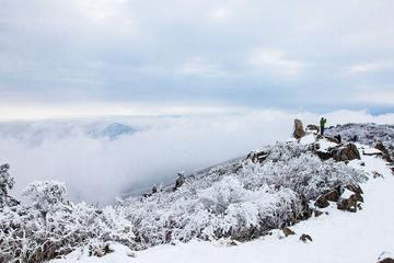 1-day Hiking on Snow-capped Hangzhou Longwang Mountain